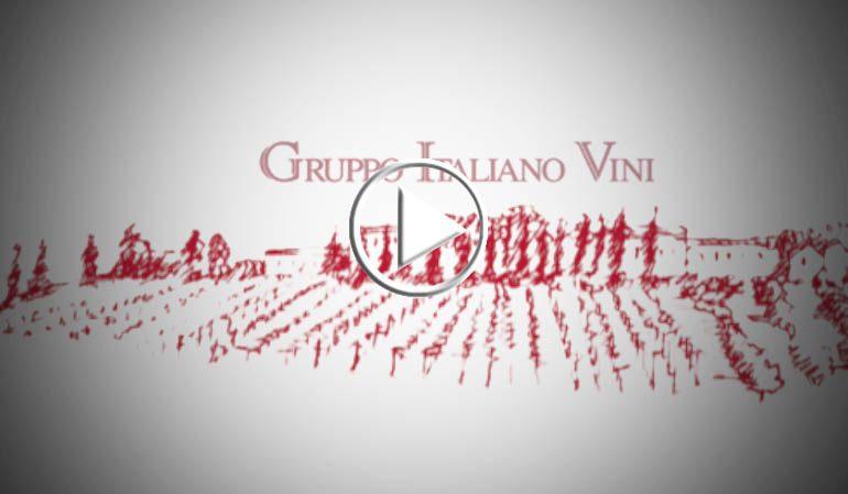 Gruppo Italiano Vini tra eccellenza e bio