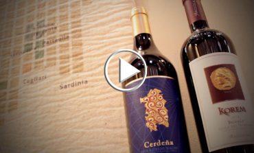 Argiolas trasforma gli scarti delle vigne in elementi di design