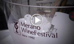 Merano WineFestival cresce e convince